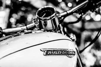 Harley White300dpi